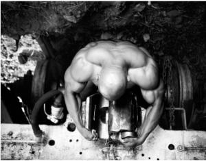 bodybuilding pictures 2
