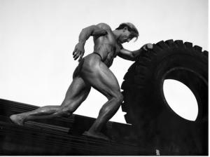 bodybuilding pictures 4